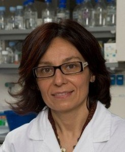 Claudia Bagni, PhD, at University of Rome, FRAXA research grant