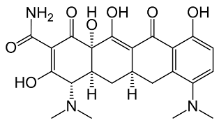 Chemical structure of minocycline.